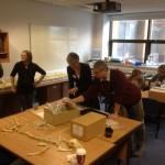 Digging Deeper in Dorset: Identifying Ancient Animal Bones through Zooarcheology