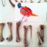 A drawing by one of our youngest visitors of her pet chicken (Photo by J. Best)