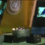 Centre's Shelley Thompson presents to the UN