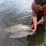 BU staff and students help undertake international research into salmon and sea trout populations in the English Channel