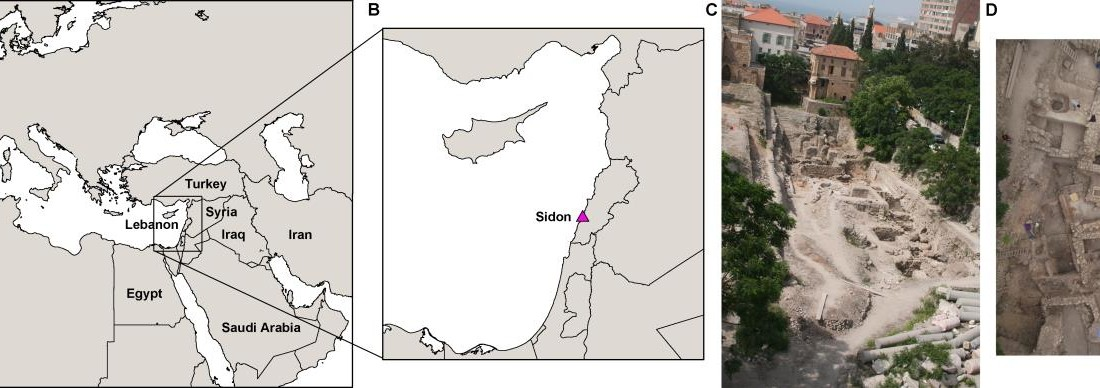 The Sidon excavation site. (A) Map shows the location of Lebanon with present-day political borders in the Near East. (B) A magnification showing the Levant region and the location of the city of Sidon. (C) Photo shows the Sidon excavation site, which included the burials of individuals studied here.