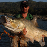 Can a scientific name save one of Earth's most iconic freshwater fish from extinction?