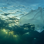 Plastic pollution: could we clean up the ocean with technology?
