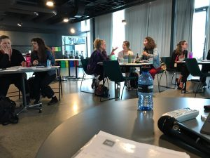 Picture of the FACETS workshop in action